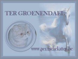 Cattery ter Groenendael
