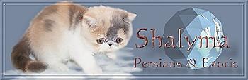 Shalyma