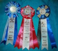 [awards]