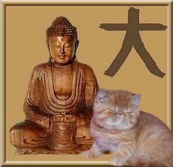 Little Buddha with Buddha